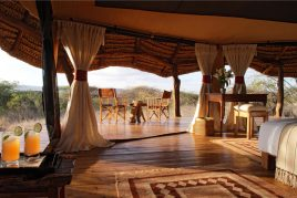 Glamping & Lodges